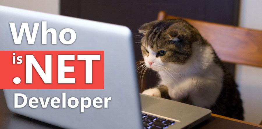 Кто такой C#/.NET Developer